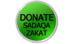 green_donation_button copy